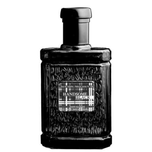 Handsome Black Paris Elysees Frasco de 100 ml EDT
