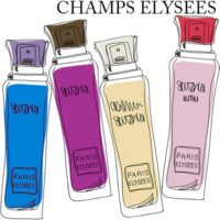 Coleção Champs Elysees