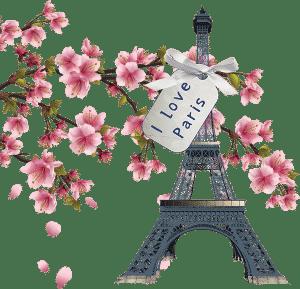 Eu amo Paris Elysees